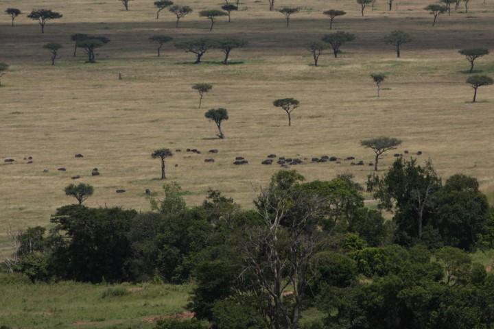 Afryka – co to jest?